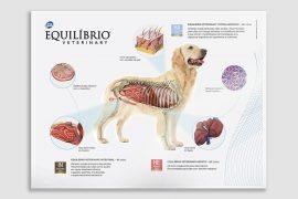 Total Alimentos | Equilíbrio Veterinary – Pôster Fisiológico Cães