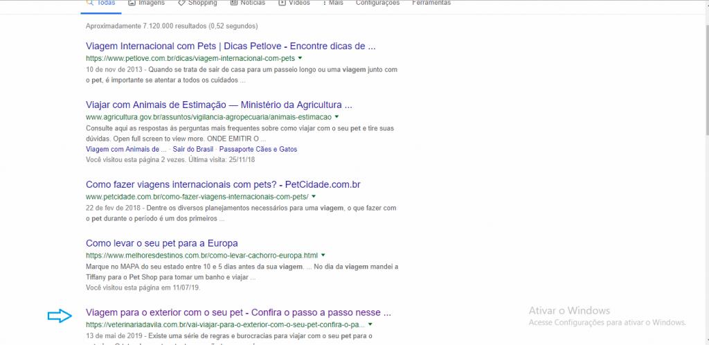 SEO para veterinários - buscas no google